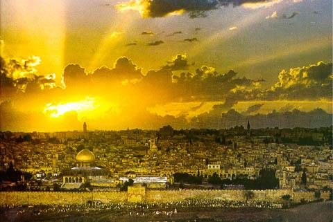 http://www.cirota.ru/forum/images/104/104487.jpeg