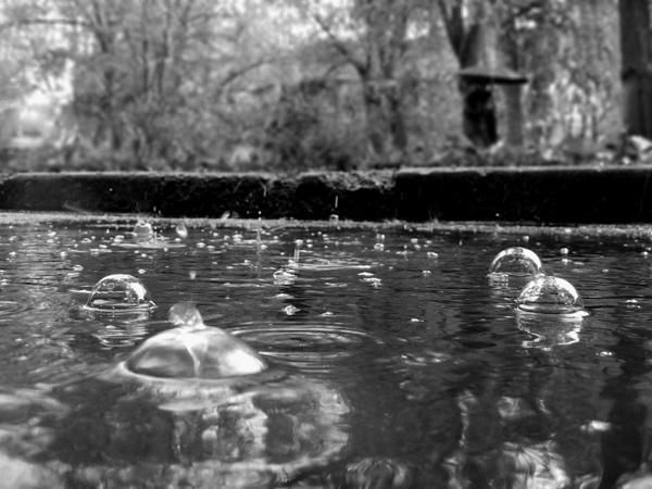 Шум дождя самое интересное в блогах