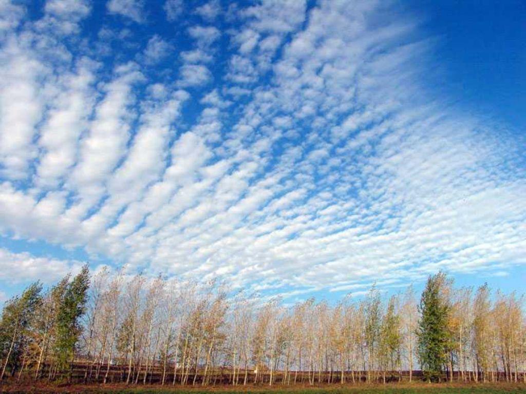 фото кучевые облака
